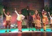התיאטרון שלנו - הברווזון המכוער כרטיסים
