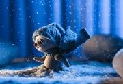 תיאטרון מלנקי - אגדת שלג כרטיסים